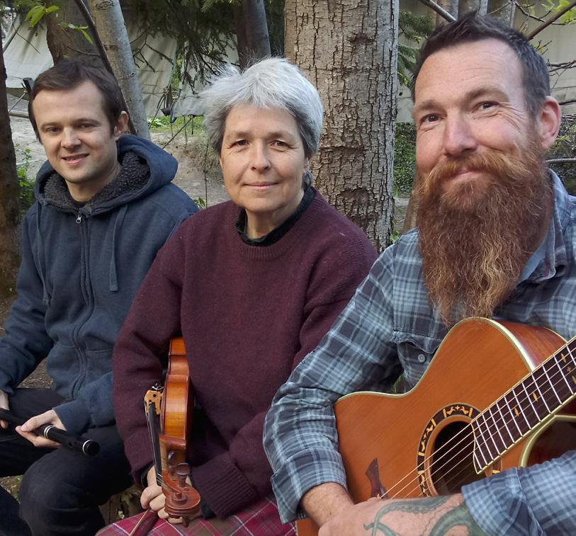 Ceilidh Band, Folk Band, Irish Band #4010 For Hire Image