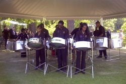 Caribbean Band, Steel Band #471 Image