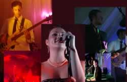 Wedding Band Somerset, Ref: 655